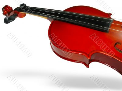 Classic violin closeup with shadow over white background