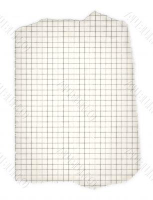 torn squared paper