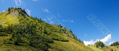 Lush green hill in bright summer day in Alps