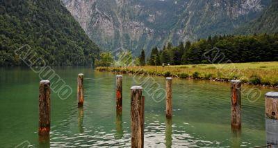 Green water and wooden mooring posts at lake