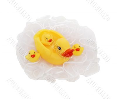 Rubber duckie and babies