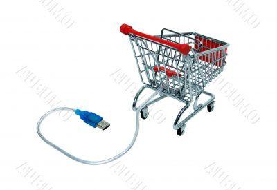 Online shopping checkout cart