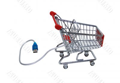 Online shopping checkout cart