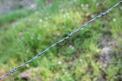 Single strand of barbed wire