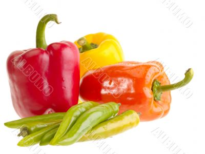 Different fresh tasty peppers on white wet background