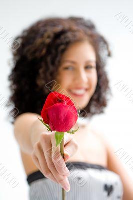 Presenting red rose