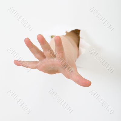 Child`s hand stick out from hole