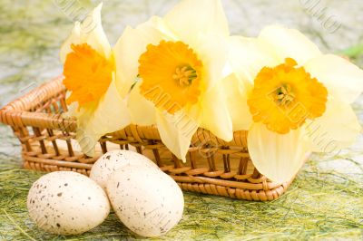 Daffodils in the basket and easter eggs