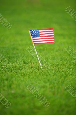 american flag on grass