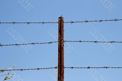 Three strands of barbed wire on rusty post