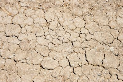 Cracked ground during drought