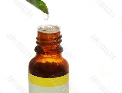 Herbal essence