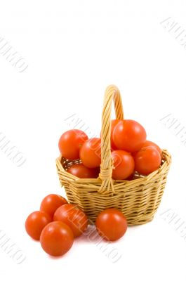 cherry berr ytomatoes in a wicket isolated on white