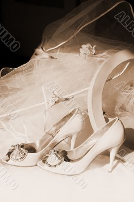 Wedding shoes, box and veil