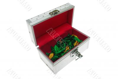 Opened distinctive magic chest with flower leafs on bottom isola