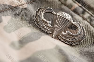 Paratrooper War Medal