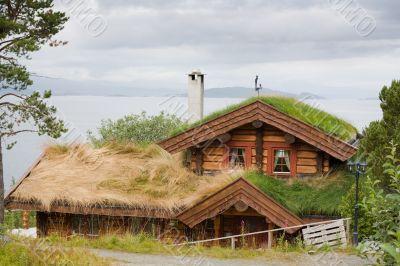 overgrown house