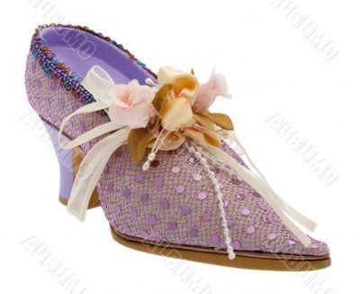Lady shoes elegant