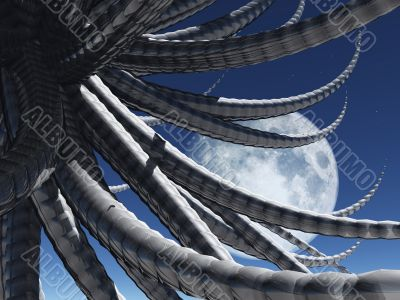 tentacles - octopus