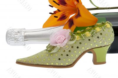 elegant lady shoe with champagne