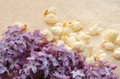 Still-life from a lilac on a towel