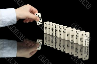 Domino bone in hand