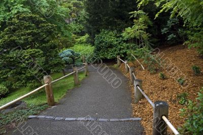 Road with a wooden fence