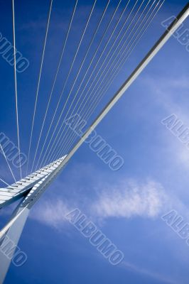 Erasmus Bridge. Details