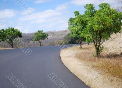 Turn of road and roadside