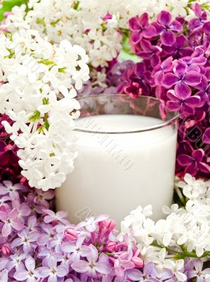 lilac flower and milk