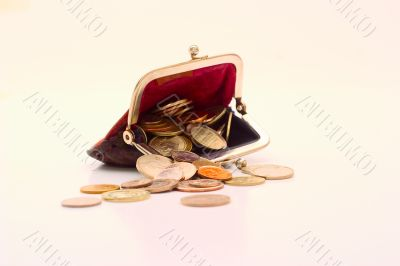 Wallet with coins