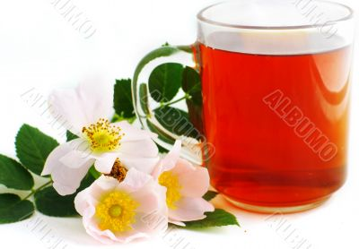 Herbal tea in cup of glass
