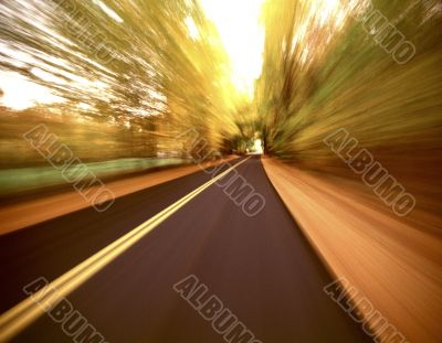 Sunlit Open Road Through Countryside