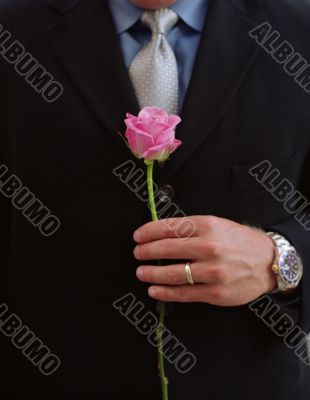 husband with Valentine`s Day pink rose