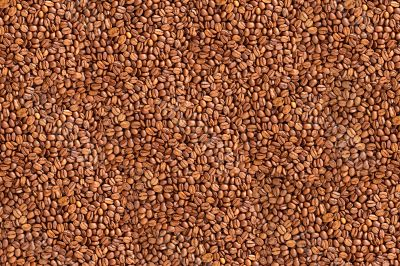 Fried coffee beans color background
