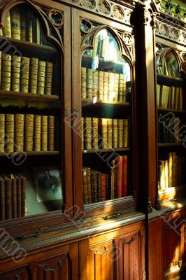 personal library. interior