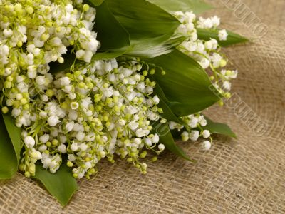 With love. Still-life. lily of the valley on the burlap