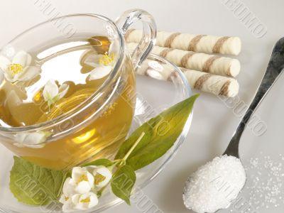breakfast still-life. green tea with cookies and jasmine