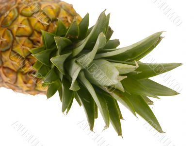pineapple on white background with clipping path