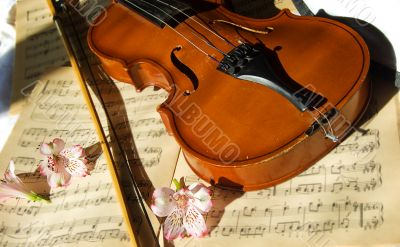 Violin on music sheet