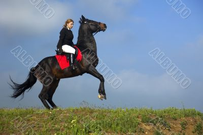 girl trains the horse
