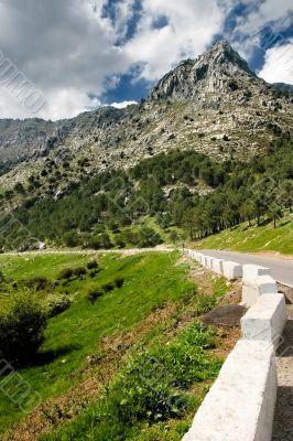 Mountain range of Grazalema ( Cadiz )