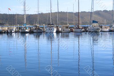 Row of yachts at the harbor