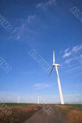Wind powered turbine