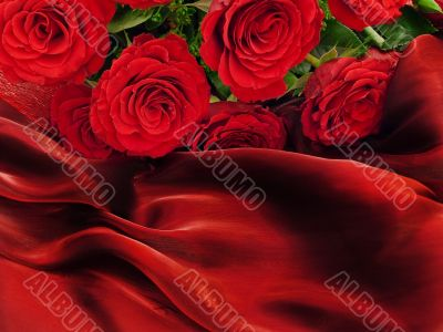 Red roses on vinous fabric