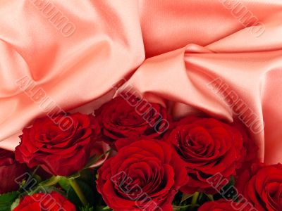 Red  roses on pink fabric