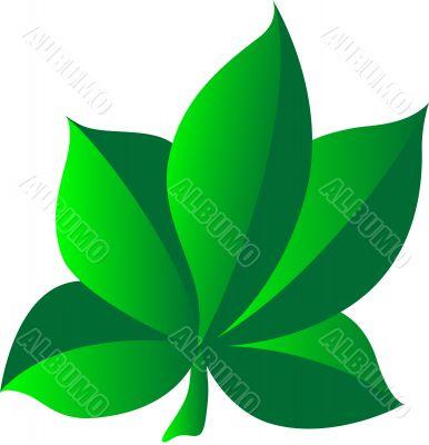 Leaf cartoon