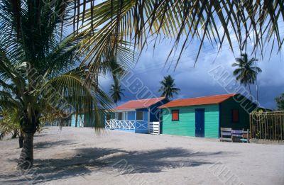 Saona island village and palm trees- Dominican republic