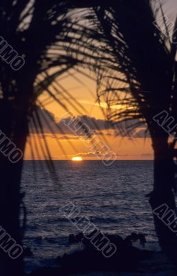 Sunset on ocean - Bayahibe - Dominican republic