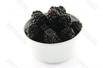 Blackberries in a Small Round Dish